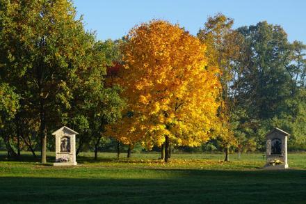 złota jesień 1