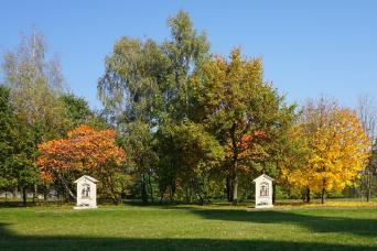 złota jesień 3